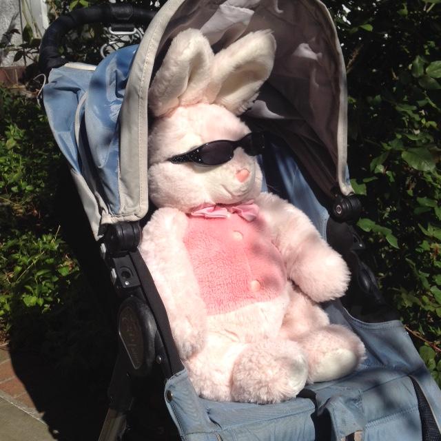 pink rabit in stroller