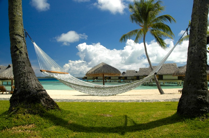 Hammock_-_Polynesia