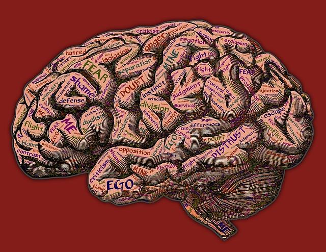 mind-2197437_640